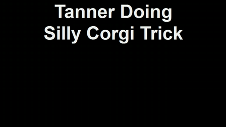 Tanner's Silly Trick