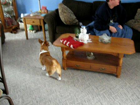 Chloe Watches TV