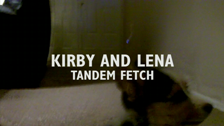 Kirby and Lena Tandem Fetch