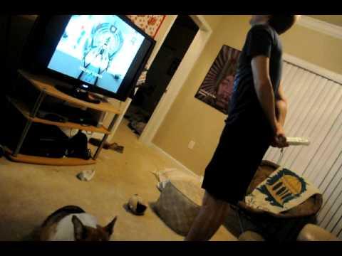 Corgi and clumsy guy destroy TV