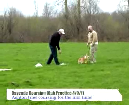 Coursing Practice