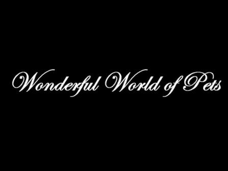 Wonderful World of Pets