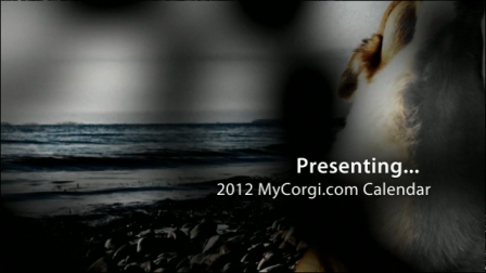 2012 mycorgi calendar