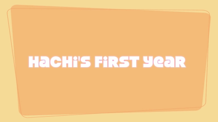 Happy First Birthday, Hachi!