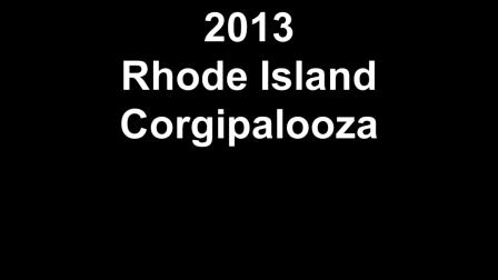2013 Rhode Island Corgipalooza