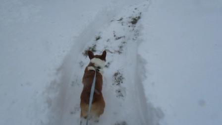 169 Fun In The Snow!
