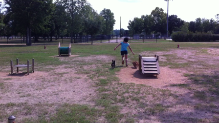 first attempt at an obstacle course.