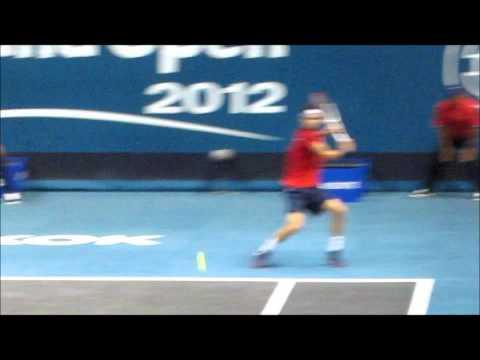 Grigor Dimitrov--Backhand Return vs Backhand Groundstroke