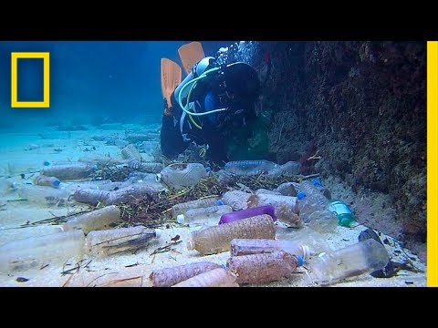 Here's How Much Plastic Trash Is Littering the Earth | National Geographic