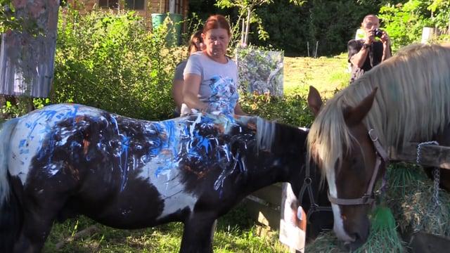 Kunst & Pferd (komplett)