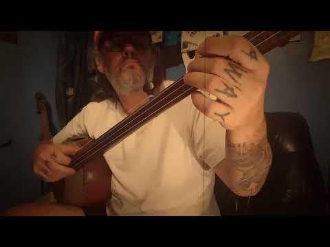 Stephen.C.Foster banjo(Gourd) Medley