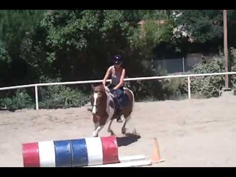 Jumping Lesson - Emily & Suki