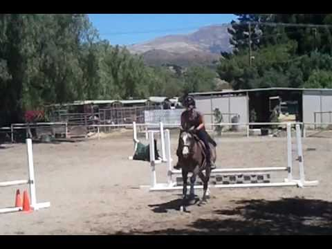 Jumping Lesson - Ashley & Oscar
