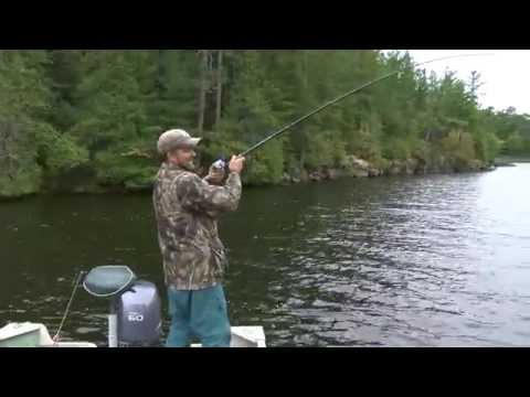 Mike Pettry 42in Muskie Sept 2014