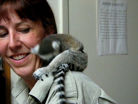 Laurie with baby Lemur