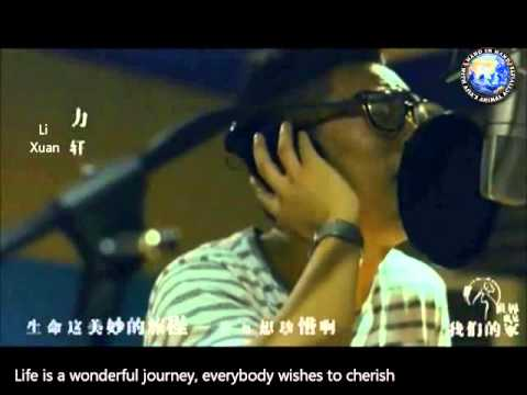 Chinese Songwriter Xiao Pi 小皮 Writes Song For Animals