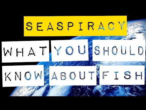 SEASPIRACY: What You Should Know About Fish, The Ocean, and More!