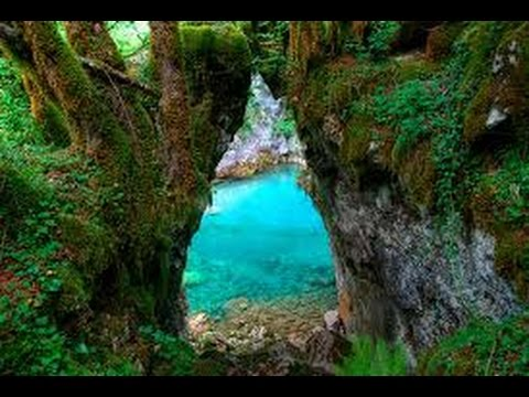 Nature Documentary Russia's Secret RainForest 2016