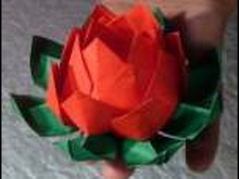 Origami Lotus Flower Instructions