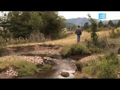 Pueblos Originarios - Mapuches I: La Fuerza de la Tierra
