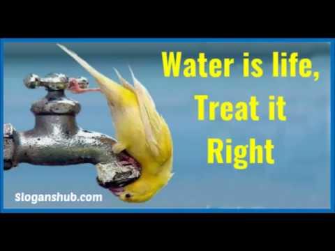 Top 10 Save Water Slogans
