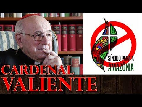 """Card. BRANDMÜLLER: """"es HERÉTICO y APÓSTATA el Instrumentum Laboris del Sínodo de la Amazonia"""""""