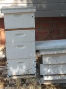 box bundle