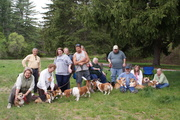 Corgi Meetup - Kingston NH