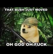 When relaxing in the bush