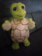 gefilzte Schildkröte