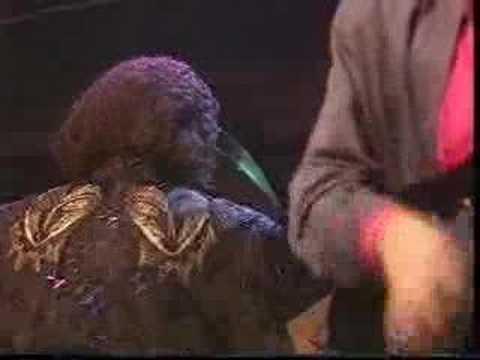 Miles Davis- Wrinkle -  Live at Die Fabrik, Hamburg 1986