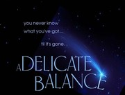 Premiere Screening - A Delicate Balance: The Truth
