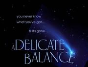 Fundraising: A Delicate Balance Screening (Jan. 24th)