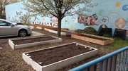 Fair Haven Library: Community Garden