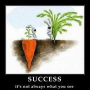 HIDDEN SUCCESS-2012