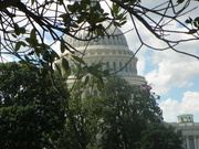 WASHINGTON,DC.-2013 151