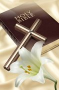 THE BIBLE TRUTH WORLD WIDE MINISTRIES