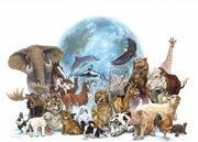 Earthlings --- Animal Lovers --- Make a Change