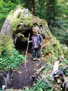 Hikes With Kids
