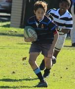 Rugby: U12 vs Selborne