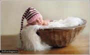 babies_photos31