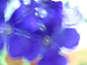 синее сияние....
