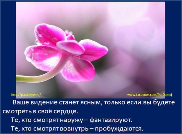 1004546_699212040101697_1600224246_n