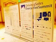 DrivingSales Executive Summit - Las Vegas
