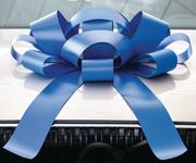 Blue Car Bow