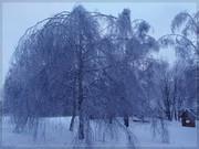 Кристальная зима