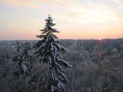 Зима-2011