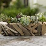 thumbs_succulent-garden-in-home-and-outdoor2-5