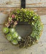 succulent-garden-in-home-and-outdoor1-11