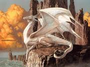 белый дракон 1